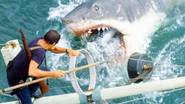 Halloween Movies Movie Jaws